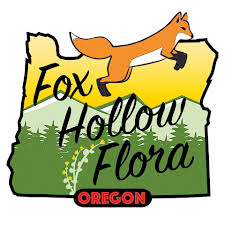 Lemon Hashplant - Fox Hollow Flora image