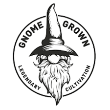 Gnome Grown-Ice Cream Cake image